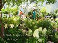 mehr zu DiGA - Die Gartenmesse Schloss Beuggen