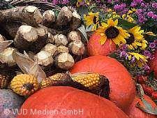 Meerrettichfest mit Spätjahrsmarkt in Urloffen